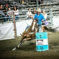 Rodeo Gelding with lots of Chrome