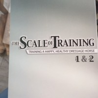 The Scale Of Training