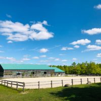 Beautiful equestrian facility for lease