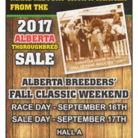 CTHS AB Yearling Sale