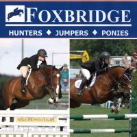 Foxbridge: Private Show & Sales Stable, Caledon East