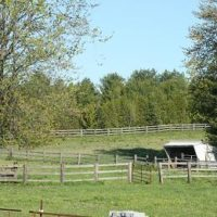Hopewell  Creek Stables: Guelph/Kitchener/Waterloo, ON