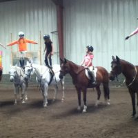 Lease quiet well trained horse, costs less ownership!