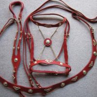 New English & Western Saddle, Tack for Sale Canada.