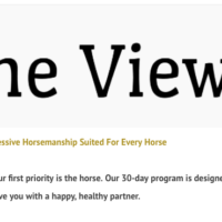 The View Horsemanship