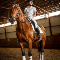 Equestrian Portrait, Advertising, and Editorial Photos