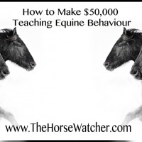 How to make $50,000 teaching Equine Behaviour